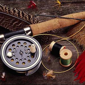 Охотничьи и рыболовные магазины Шахуньи